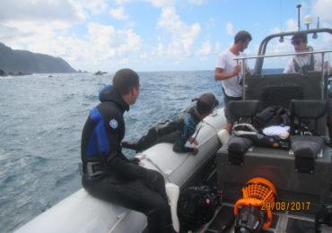 Hábitat de la foca monje estudiado con las exploraciones de Mónaco