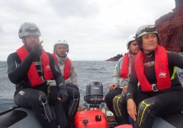 (Español) Focas monje retrasan la misión del LIFE Madeira foca monje