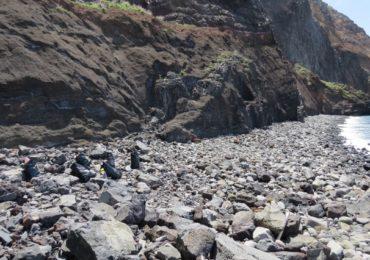 Playa limpia-Playa más bonita para las focas monje y para nosotros