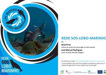 Formación en el ámbito de la REDE SOS Lobo-marinho