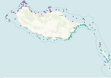 LIFE Madeira Lobo-marinho confirma área de distribuição da espécie