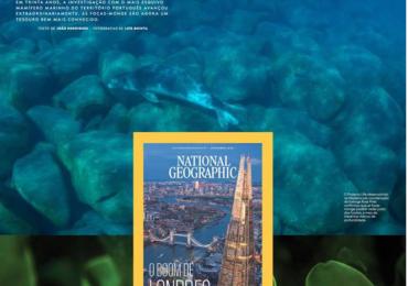 As focas da Madeira estão na National Geographic